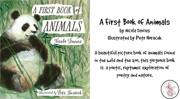 A First Book of Animals {Review}