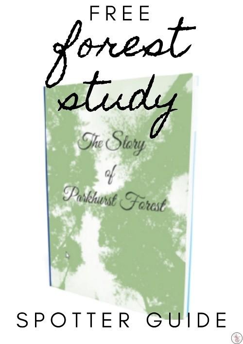 Parkhurst Forest Study Guide
