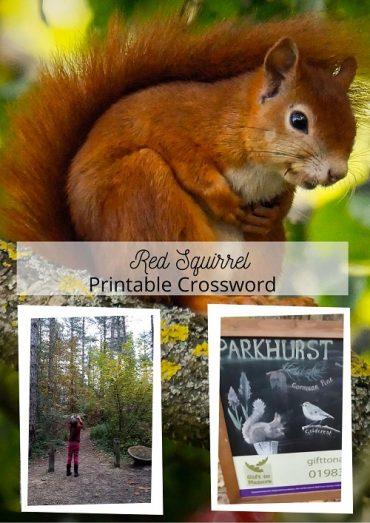 Red Squirrel Printable Crossword