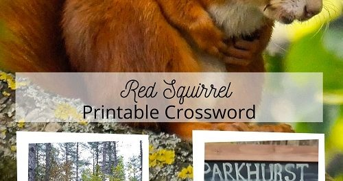 Red Squirrel Printable Crossword